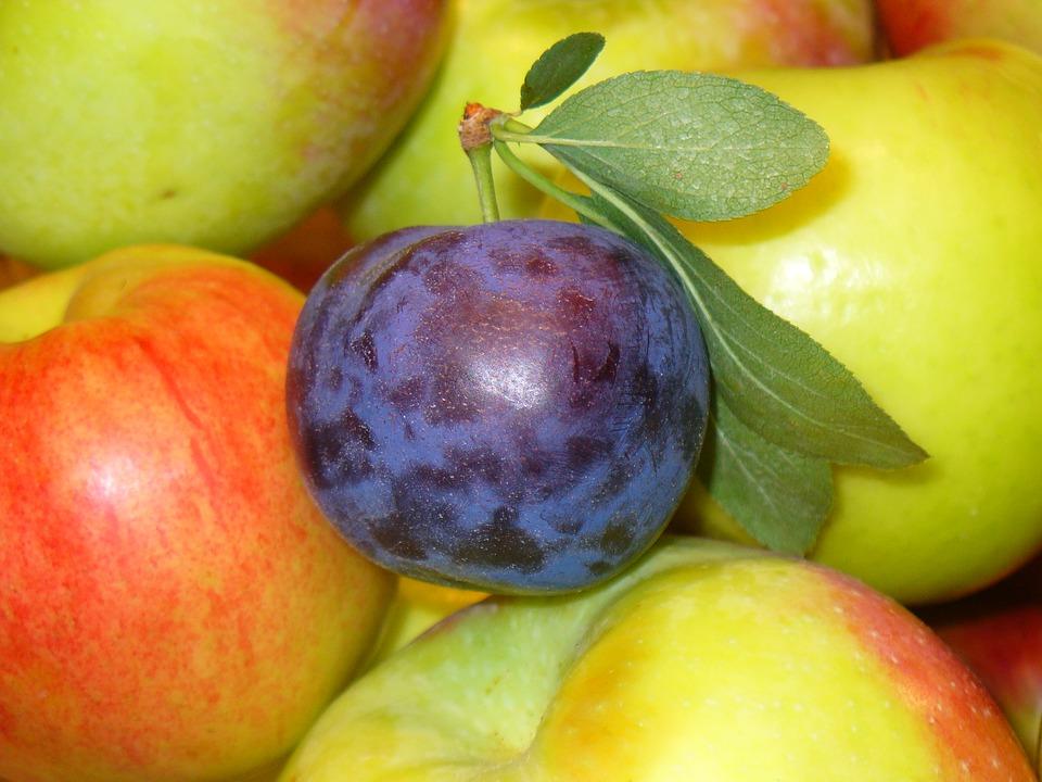 fruits-1868977_960_720