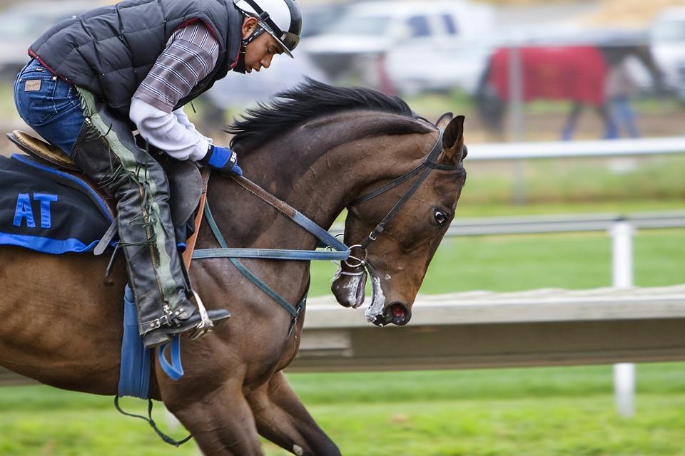 racehorse-419742_960_720汗
