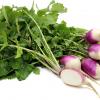 めかぶの栄養って?効果・効能と理想的な摂取量を知ろう!レシピも紹介!