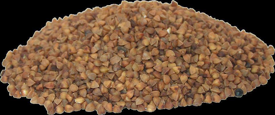 buckwheat-2201206_960_720