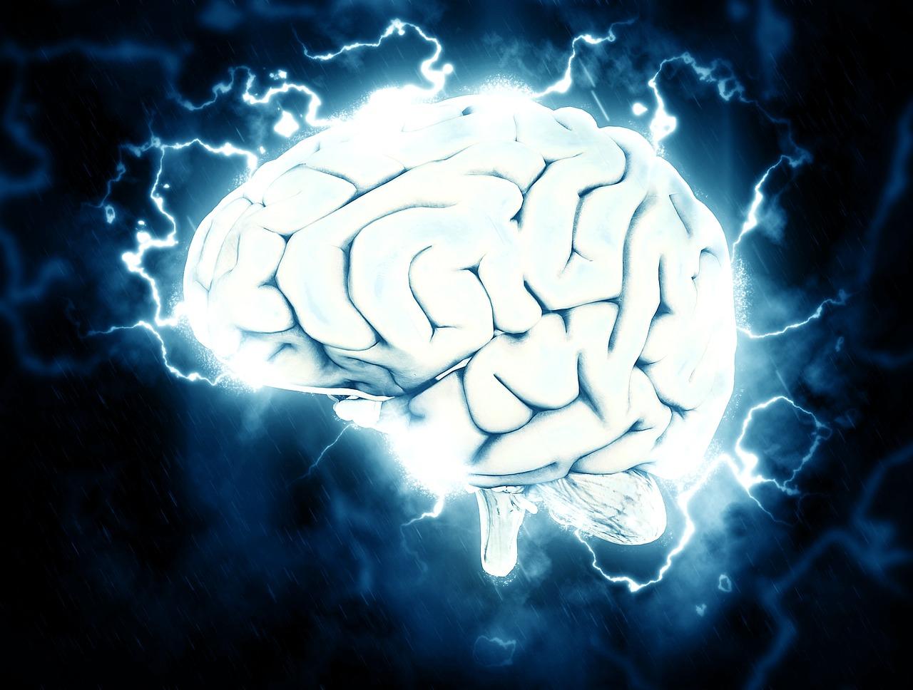 ストレスを受けた脳