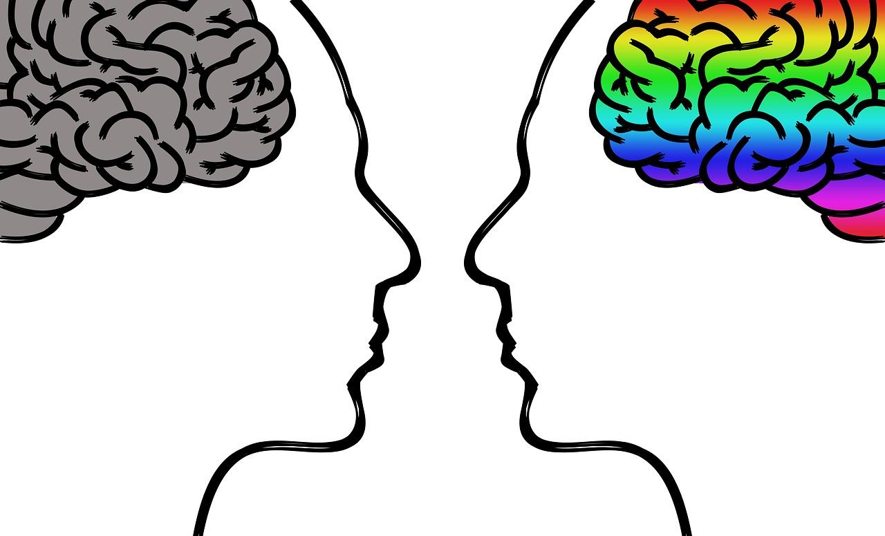 強迫性障害脳