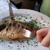 DHAとEPAの効果とは?それぞれの違いと含まれている食べ物を紹介!