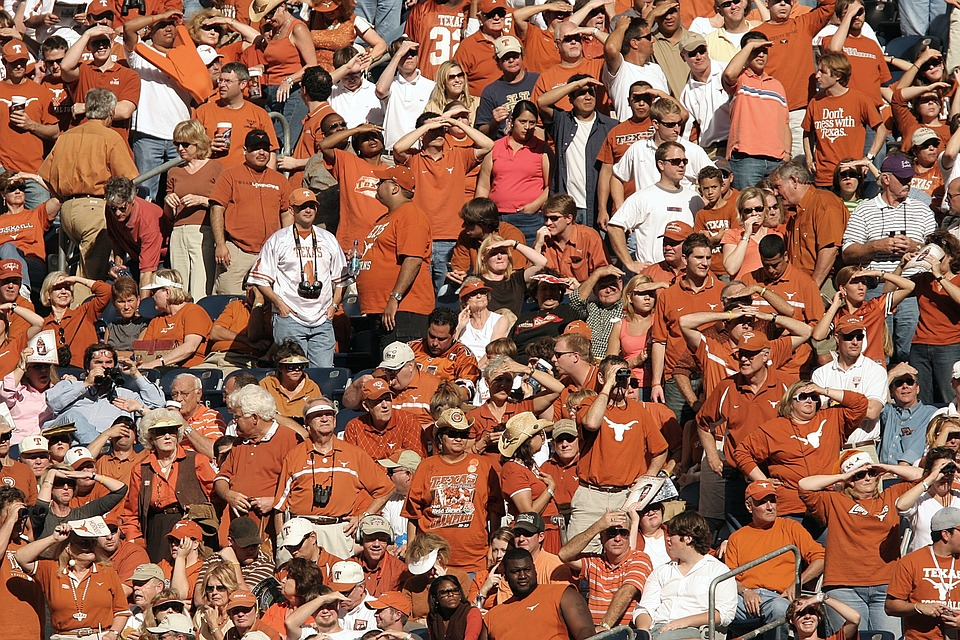 spectators-1573901_960_720ファン