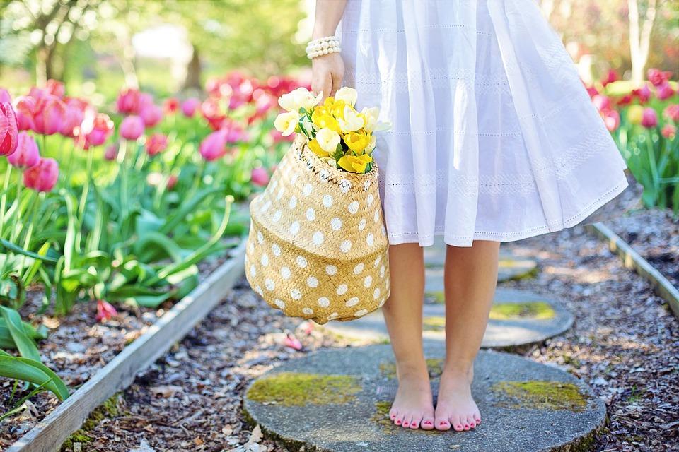 spring-2298279_960_720