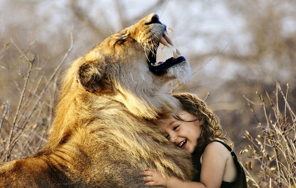 lion-3012515_960_720joke