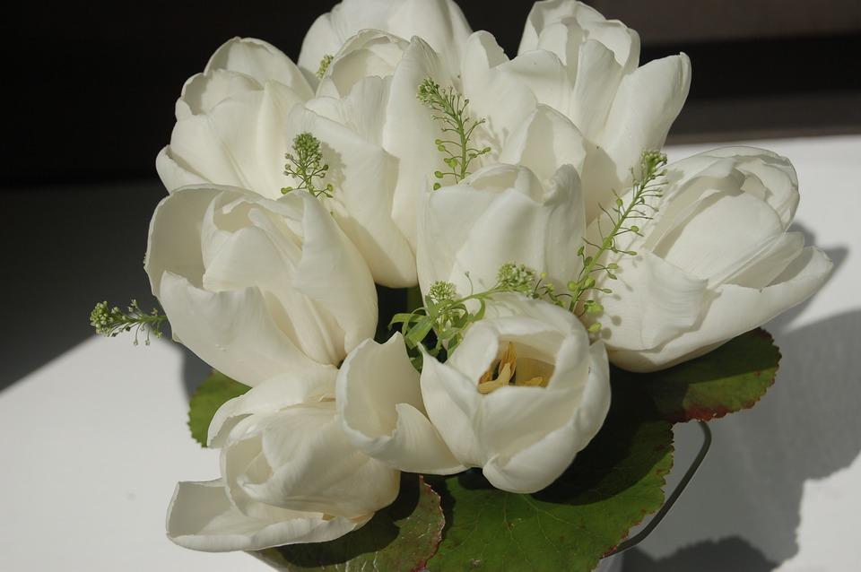 flower-3324851_960_720悲しみの白い花